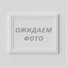 Страусиное перо 55 см белый (8501-001/white)