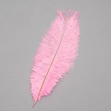 Страусиное перо 25-30 см светло-розовый (8501-002/light-pink)