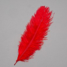 Страусиное перо 25-30 см  красный (8501-002/red)