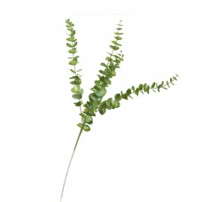 Ветвь євкалипта, зеленая (8725-020)